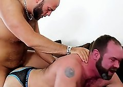 Naughty Bear Jerking Pierced Cock