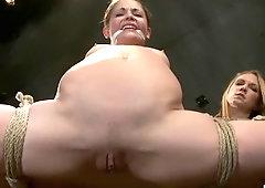 join. fetish babe sucks shlong have hit